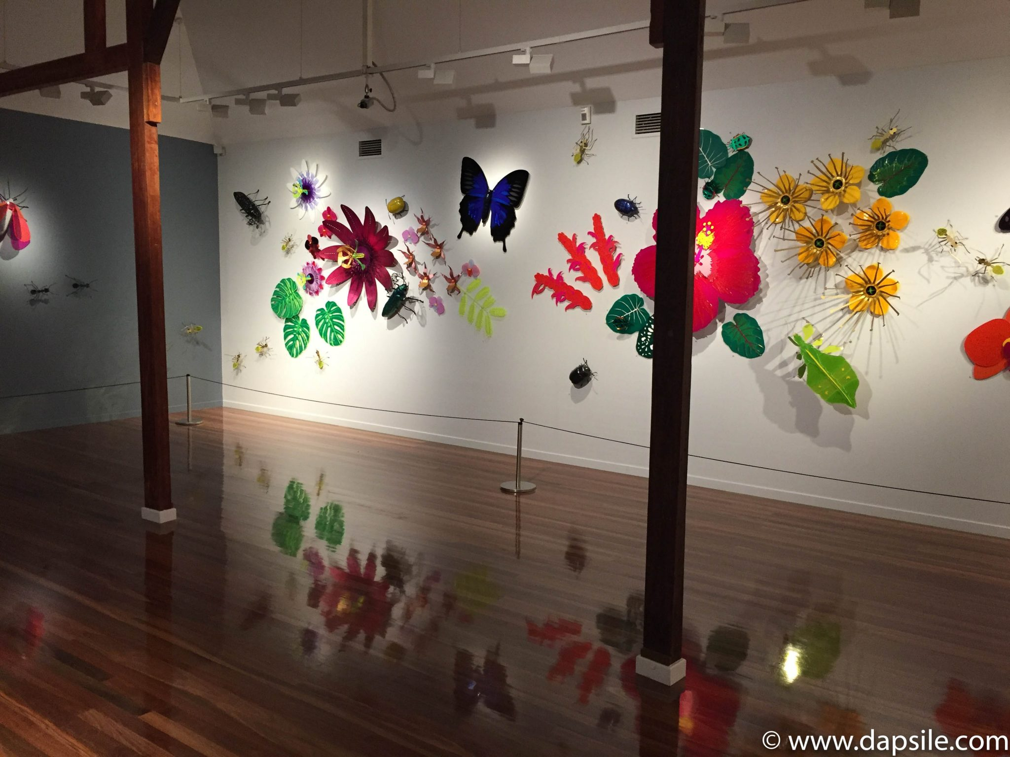 Cairns and the Surrounding Area Art Gallery Display