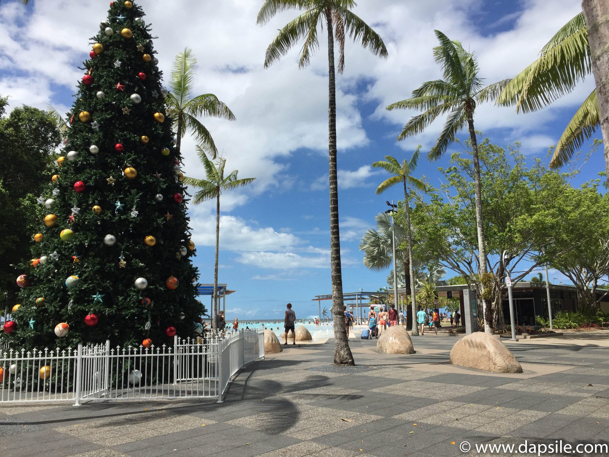 Cairns and the Surrounding Area Christmas Tree and Esplanade
