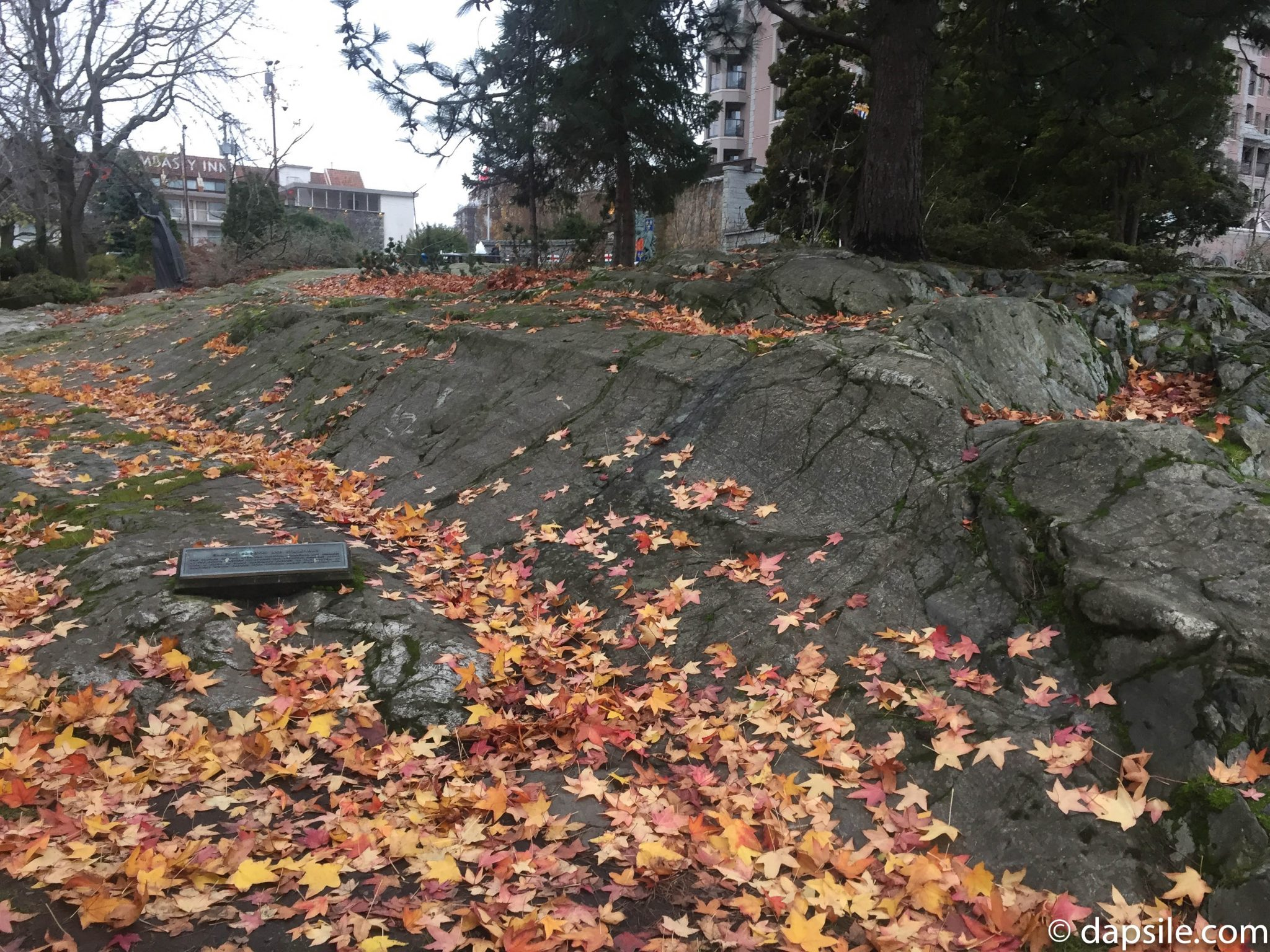 Glacial Grooves and Striations Things to do in Victoria
