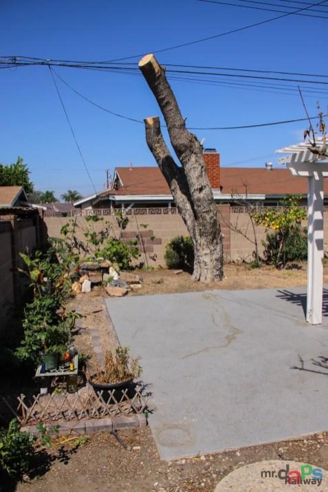 Mr. DAPs Railway Tree Removal-12