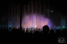 Disneyland 60th Anniversary Celebration World of Color - Celebrate-80