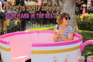 5 Tips for Safely Surviving Disneyland in the Heat