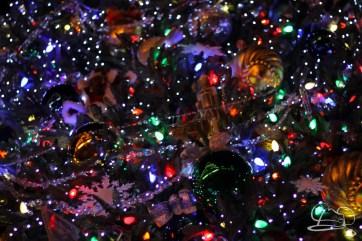 Christmas at Disneyland - November 22, 2015-80