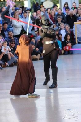Jedi Training Trials of the Temple Disneyland-142