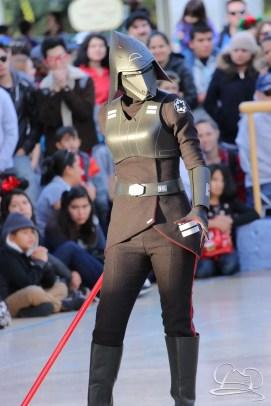 Jedi Training Trials of the Temple Disneyland-145