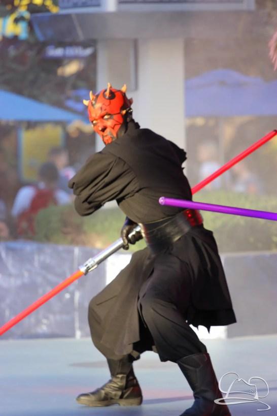 Jedi Training Trials of the Temple Disneyland-203