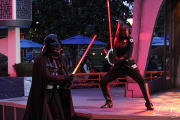 Jedi Training Trials of the Temple Disneyland-324