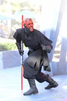 Jedi Training Trials of the Temple Disneyland-93