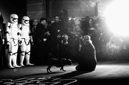 Star Wars UK Red Carpet (3)