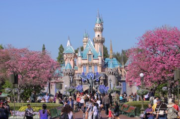 Springtime at Disneyland - February_21_2016-4