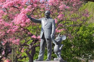 Springtime at Disneyland - February_21_2016-6
