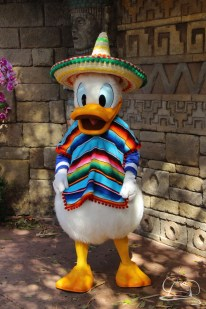 Walt Disney World - Day 1-102