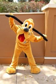 Walt Disney World - Day 1-31