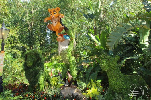 Walt Disney World - Day 1-90
