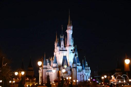 Walt Disney World Day 2 - Magic Kingdom-91