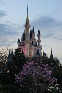 Walt Disney World Day 3 - Epcot and Magic Kingdom-96