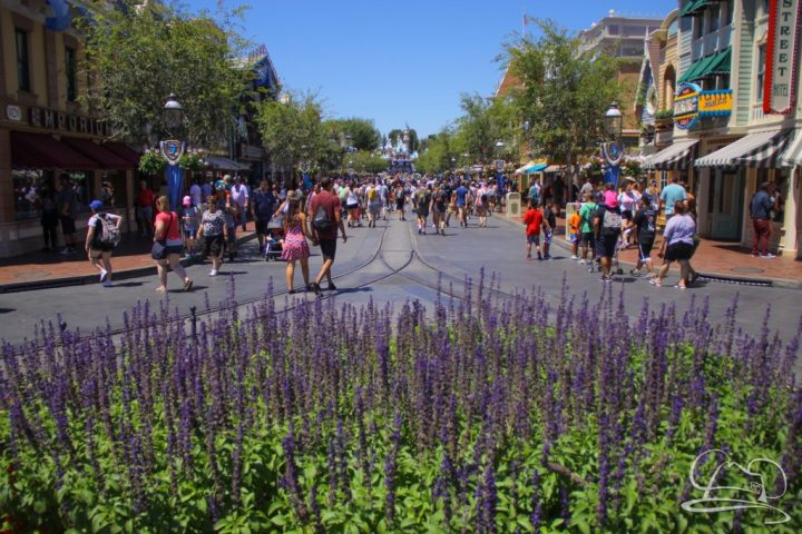 There was a stead hum of people on Main Street, USA but it was easy to navigate.