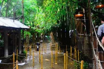 indianajones top 5 disneyland attractions