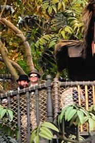 Adventureland_GeeksInWild_Treehouse 3
