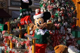 Disneyland Holidays Final Day-14