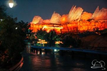 DisneylandResortRainyDay-104
