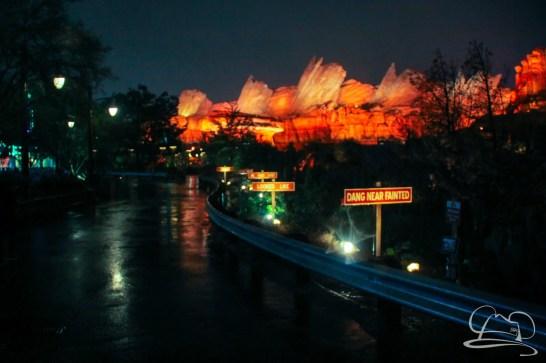 DisneylandResortRainyDay-110