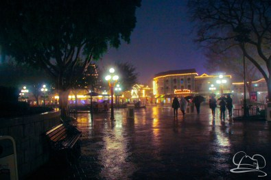 DisneylandResortRainyDay-140