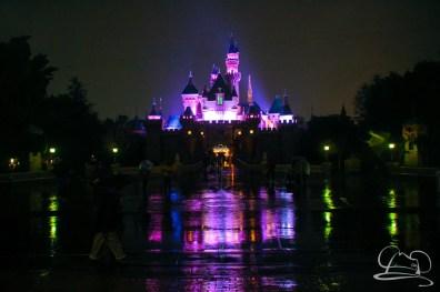 DisneylandResortRainyDay-158