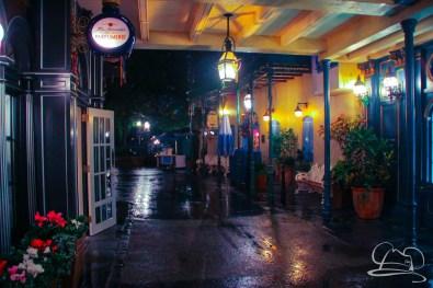 DisneylandResortRainyDay-192