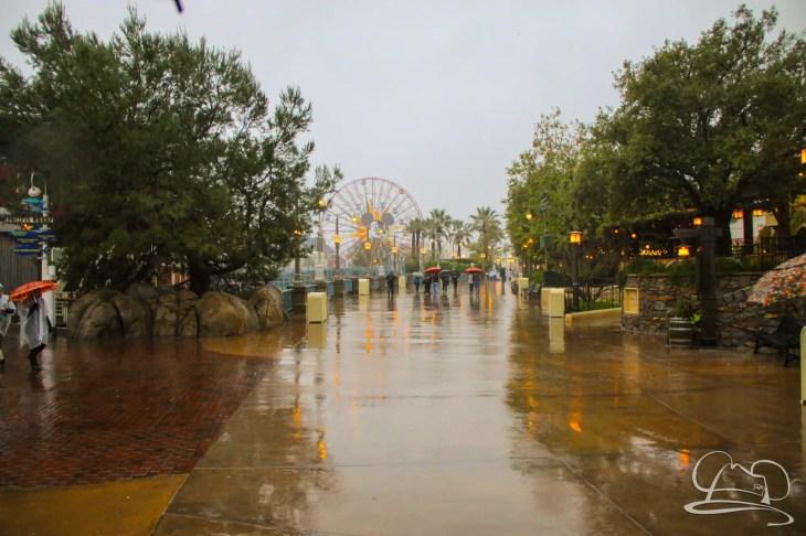 DisneylandResortRainyDay-53