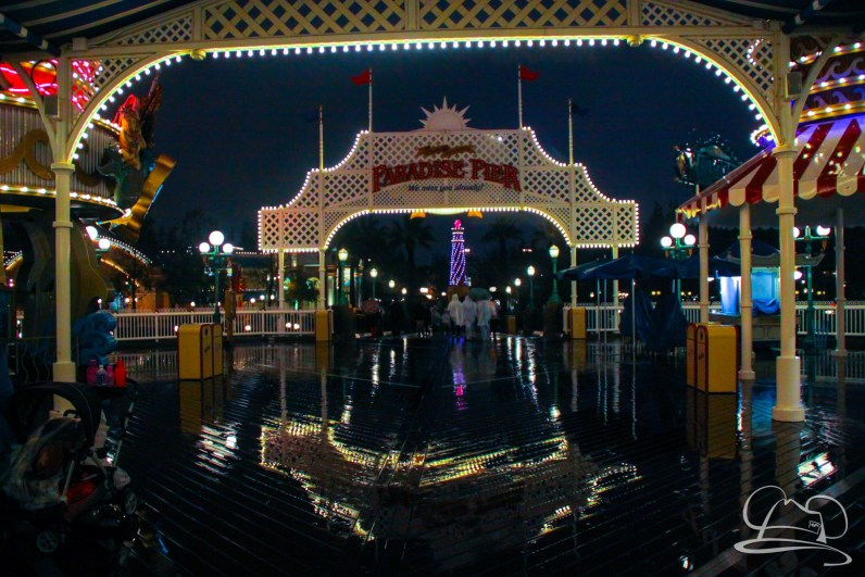 DisneylandResortRainyDay-97