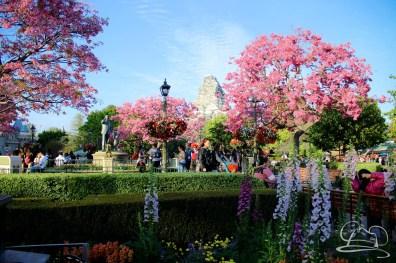 DisneylandMarch26-30