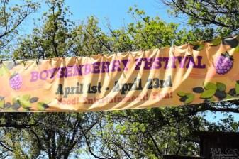 KnottsBoysenberryFestival2017 87