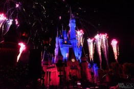 Wishes 12