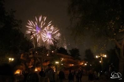 Disneyland-152