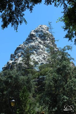 Disneyland_Updates_Sundays_With_DAPs-13