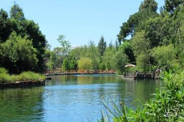 Disneyland_Updates_Sundays_With_DAPs-3