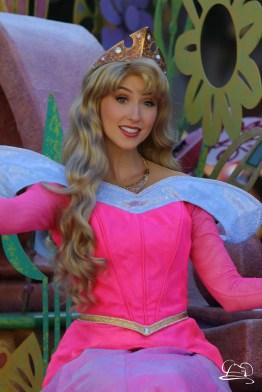 Disneyland_Updates_Sundays_With_DAPs-46