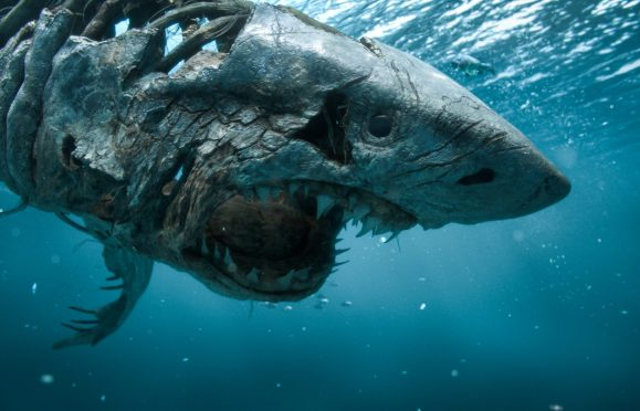 """PIRATES OF THE CARIBBEAN: DEAD MEN TELL NO TALES""..The villainous Captain Salazar (Javier Bardem) pursues Jack Sparrow (Johnny Depp) as he searches for the trident used by Poseidon..Pictured: Ghost Shark..Ph: Film Frame..© Disney Enterprises, Inc. All Rights Reserved."