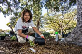 DISNEY VOLUNTEARS HELP BUILD PLAYGROUND IN ANAHEIM - Rita Burns, President Disney VoluntEARS Leadership Council, installs new plants at Willow Park in Anaheim on Saturday, September 23, 2017. The park was transformed into a kid-designed play space in less than eight hours with the help of close to 300 volunteers from the City of Anaheim, Anaheim Family YMCA, Disney, Disney alumni, area residents and organizers from KaBOOM!. With this new addition to the neighborhood, 400 kids now have more opportunities to get the balanced and active play they need to thrive. Willow Park marks the ninth Disney-sponsored KaBOOM! playground in the city of Anaheim.(Joshua Sudock/Disney Parks)