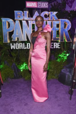 HOLLYWOOD, CA - JANUARY 29: Actor Danai Gurira at the Los Angeles World Premiere of Marvel Studios' BLACK PANTHER at Dolby Theatre on January 29, 2018 in Hollywood, California. (Photo by Alberto E. Rodriguez/Getty Images for Disney) *** Local Caption *** Danai Gurira