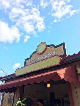 Citrus Grove Booth - 2018 Disney California Adventure Food and Wine Festival