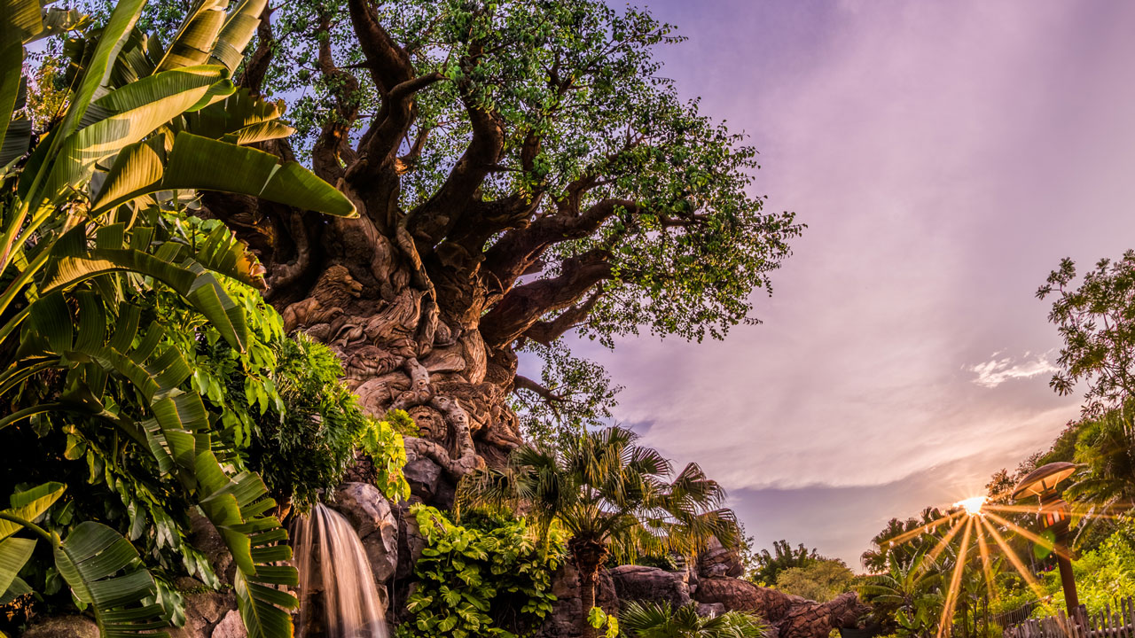 Disney's Animal Kingdom to Celebrate 20th Anniversary with A 'Party For the Planet' April 22-May 5