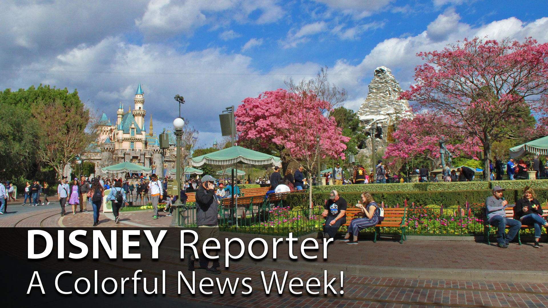 A Colorful News Week! – DISNEY Reporter