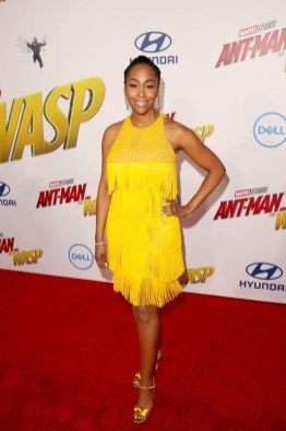 """HOLLYWOOD, CA - JUNE 25: Simone Missick attends the Los Angeles Global Premiere for Marvel Studios' """"Ant-Man And The Wasp"""" at the El Capitan Theatre on June 25, 2018 in Hollywood, California. (Photo by Jesse Grant/Getty Images for Disney) *** Local Caption *** Simone Missick"""