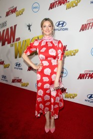 """HOLLYWOOD, CA - JUNE 25: Actor Judy Greer attends the Los Angeles Global Premiere for Marvel Studios' """"Ant-Man And The Wasp"""" at the El Capitan Theatre on June 25, 2018 in Hollywood, California. (Photo by Jesse Grant/Getty Images for Disney) *** Local Caption *** Judy Greer"""