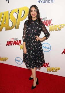 """HOLLYWOOD, CA - JUNE 25: Nikohl Boosheri attends the Los Angeles Global Premiere for Marvel Studios' """"Ant-Man And The Wasp"""" at the El Capitan Theatre on June 25, 2018 in Hollywood, California. (Photo by Jesse Grant/Getty Images for Disney) *** Local Caption *** Nikohl Boosheri"""