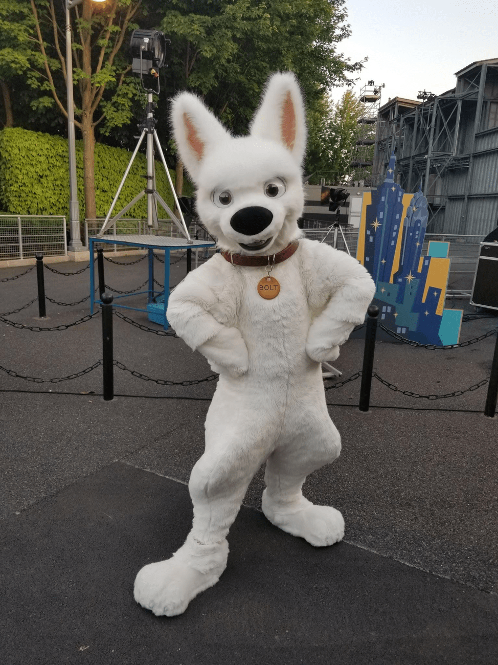 Disney FanDaze - Bolt
