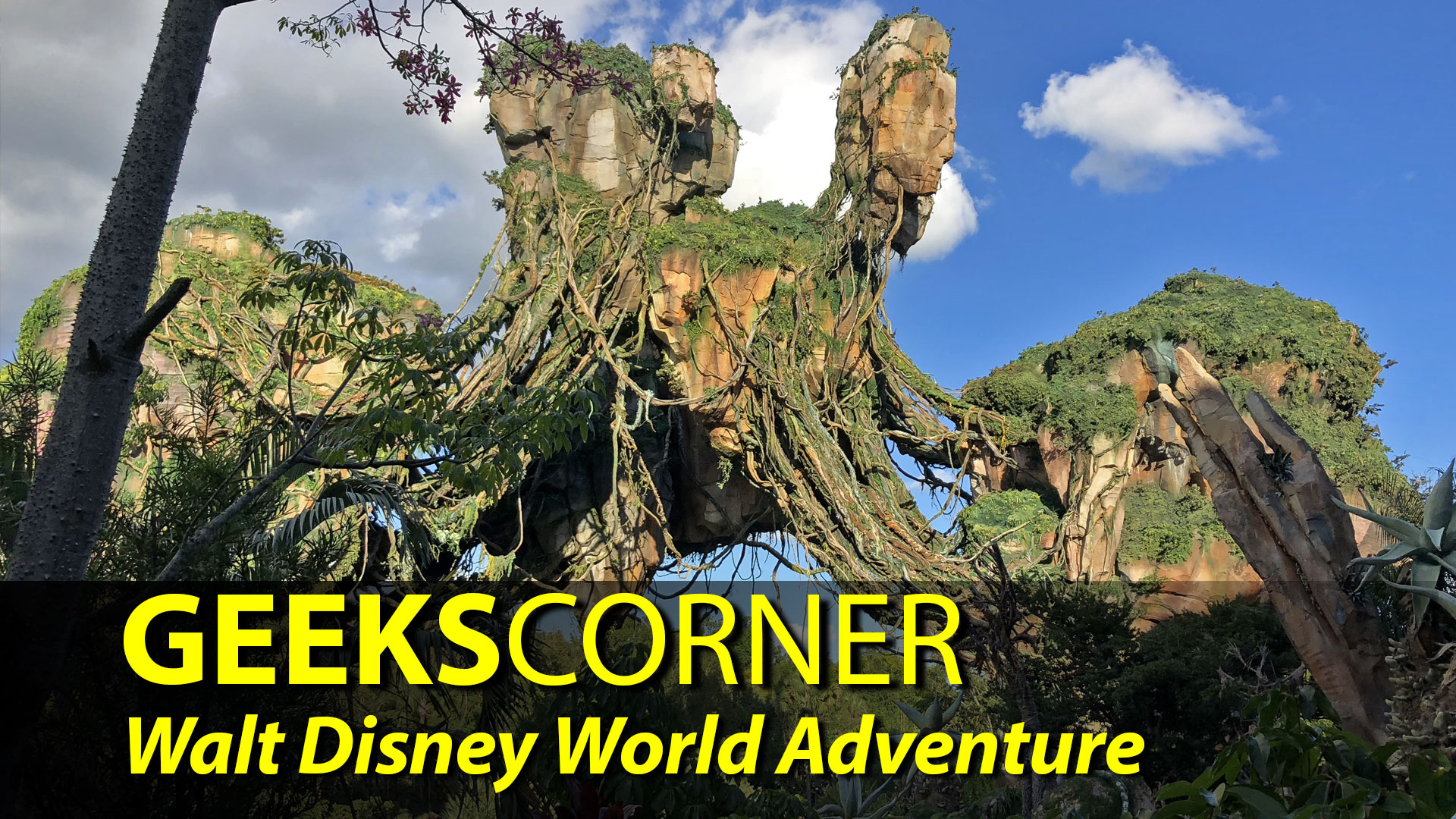 Walt Disney World Adventure – GEEKS CORNER – Episode 903