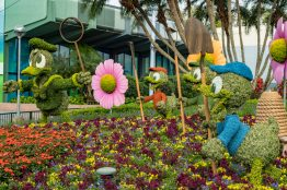Disney character topiaries like one starring Donald Duck and nephews are guest favorites at the 25th Epcot International Flower & Garden Festival which runs 90 days Feb. 28-May 28, 2018, at Walt Disney World Resort in Lake Buena Vista, Fla. The festival features dozens of character topiaries, stunning floral displays, creative gardens and exhibits, 15 Outdoor Kitchens with herb and produce gardens, plus the Garden Rocks concert series. (Matt Stroshane)